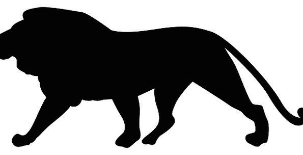 595x304 Lion, Outline, Mammal, Creature, Silhouette, Zoo, Wildlife, Nature