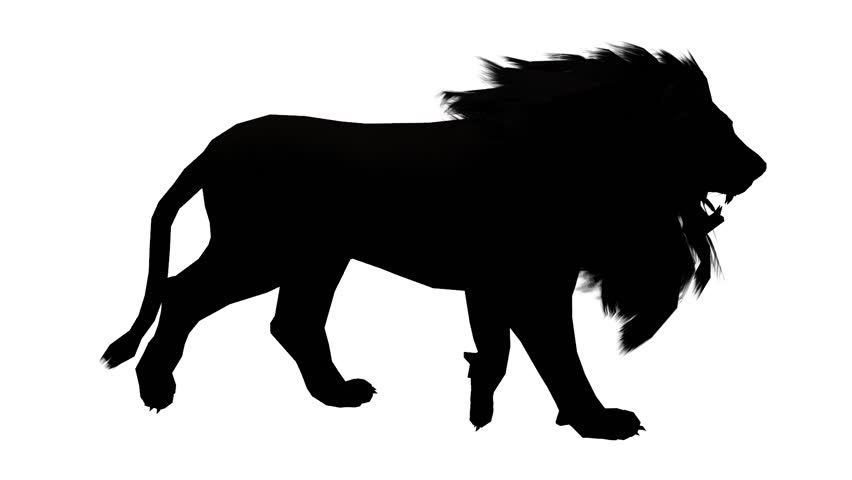 852x480 Circus Silhouettes Lion Roar Silhouette Lion Roar Stock Footage