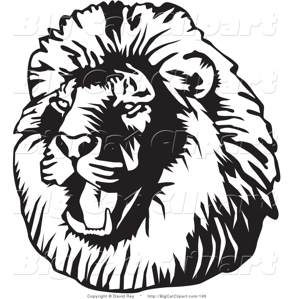 1024x1044 Big Cat Vector Clipart Of A Black And White Roaring Male Lion Head