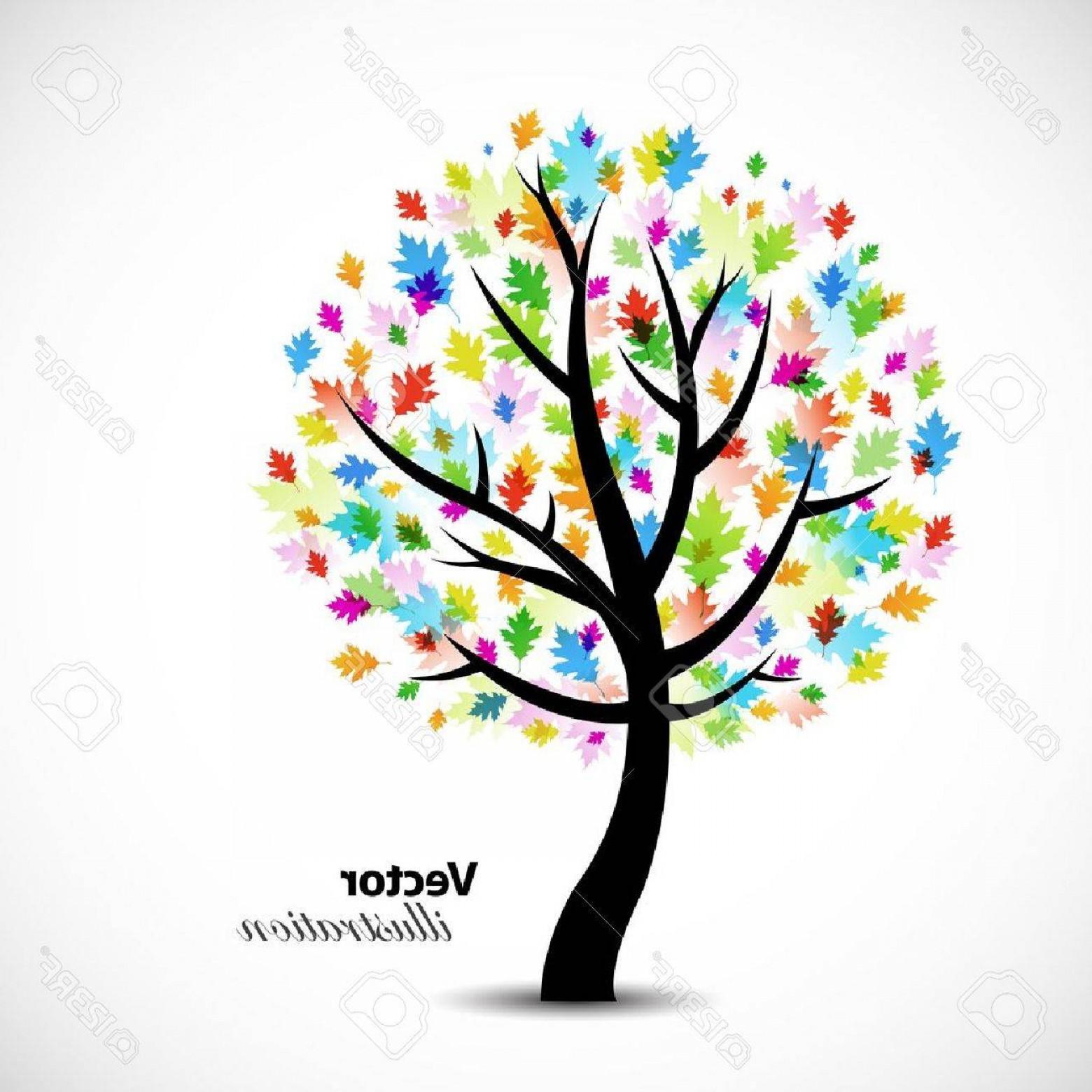 1560x1560 Live Oak Tree Vector Graphic Sohadacouri
