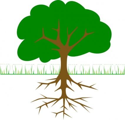 425x407 Oak Tree Vector