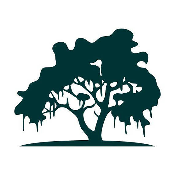 570x570 Spanish Moss Tree Charleston Southern Cuttable Design Svg Png Dxf