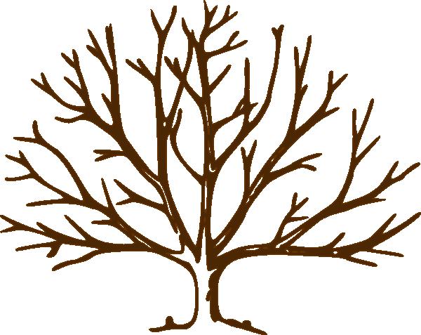 600x477 Bare Oak Tree Clipart