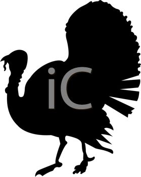 279x350 Live Turkey Silhouette