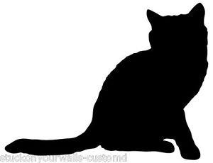 300x230 Cat