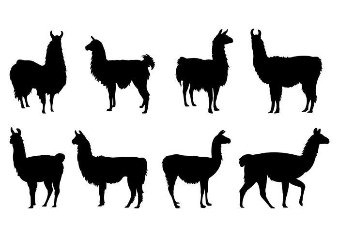 700x490 Set Of Llama Silhouettes