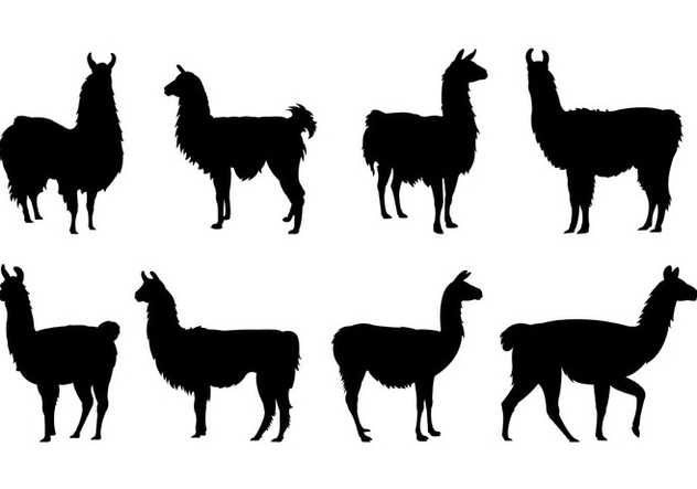 632x443 Set Of Llama Silhouettes Free Vector Download 407827 Cannypic