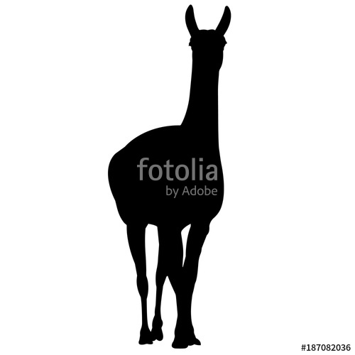 500x500 Llama Silhouette Vector Graphics Stock Image And Royalty Free
