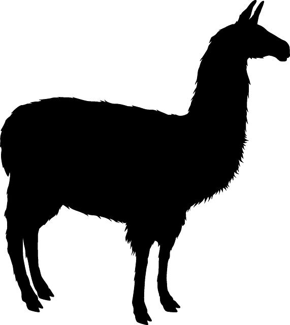 571x640 Free Image On Pixabay
