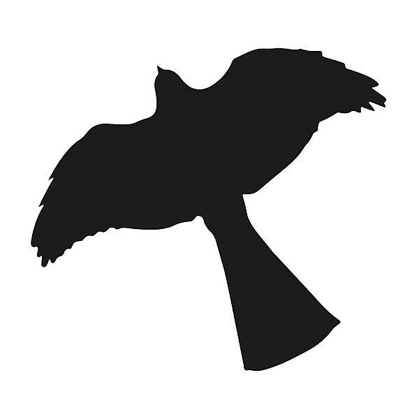 600x600 Motfagel Sparrow Hawk Window Sticker