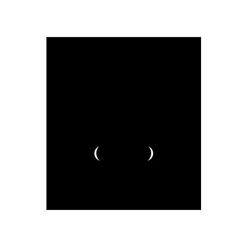 500x500 Logo Design Blackrabbit Neumatic Digital