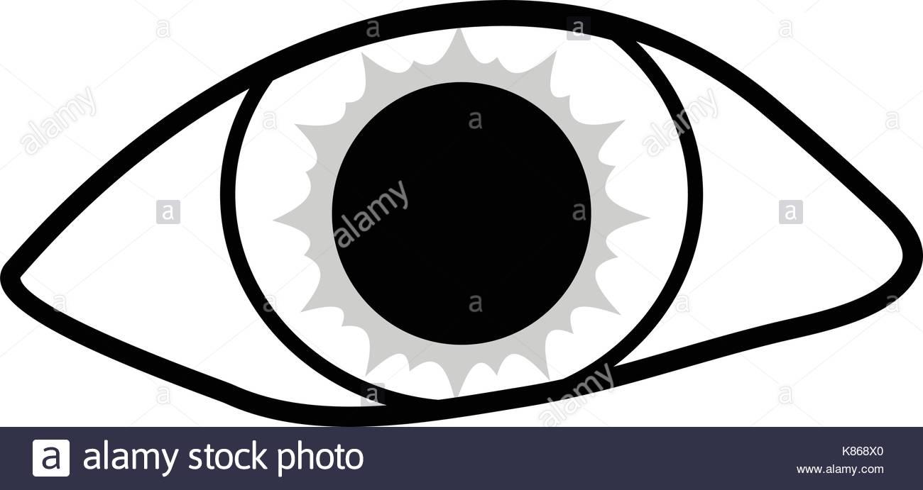 1300x691 Eye Silhouette Vector