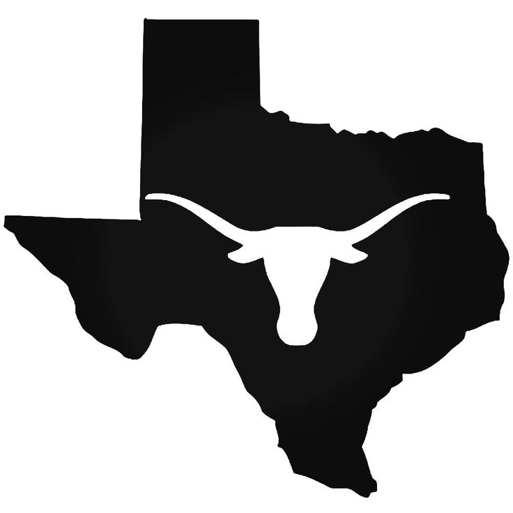 736x736 Texas Longhorn Cow Skull 2 Vinyl Decal Sticker Longhorn Cow
