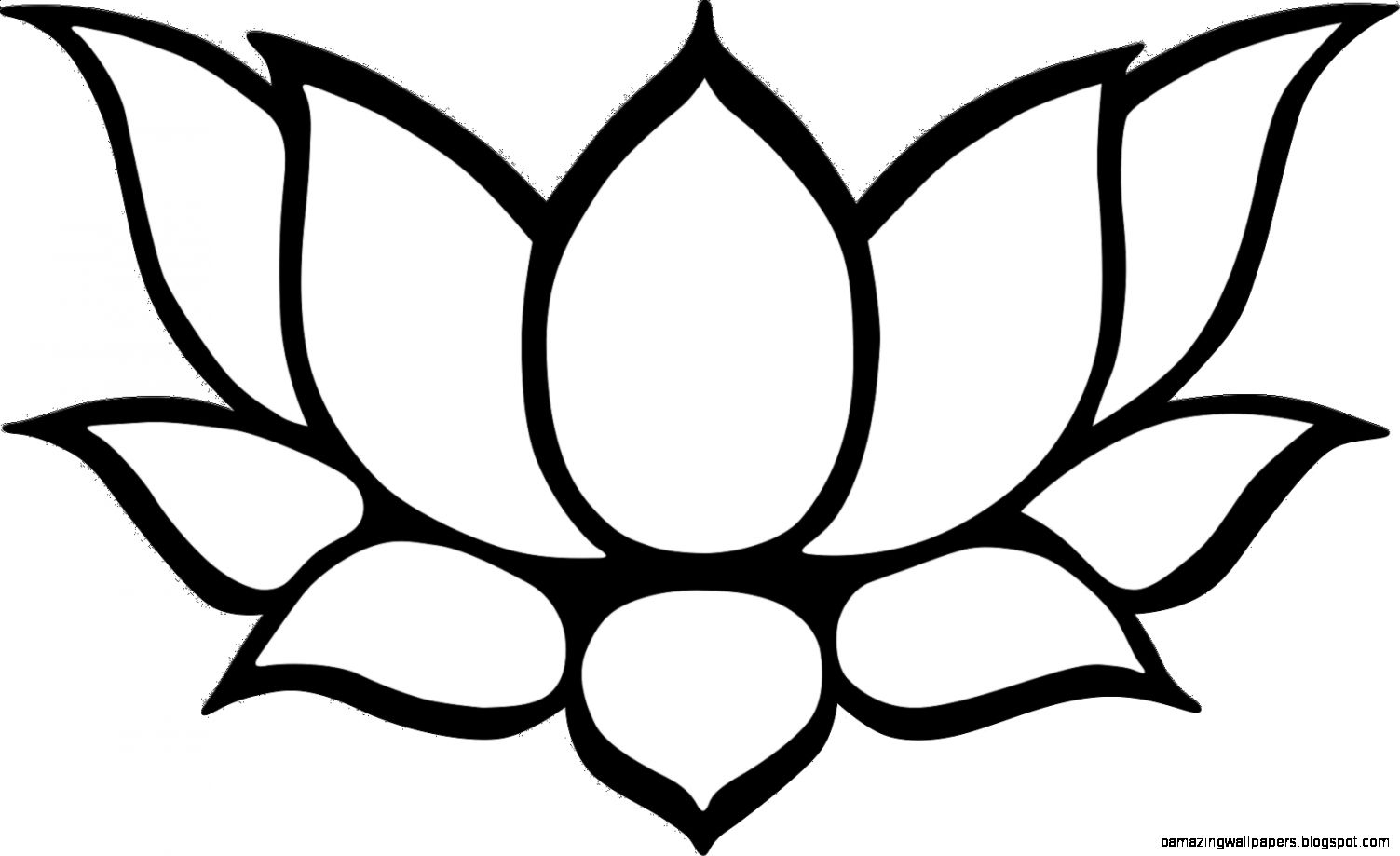 1503x919 Lotus Flower Outline Drawing Black Silhouette Outline Lotus Vector