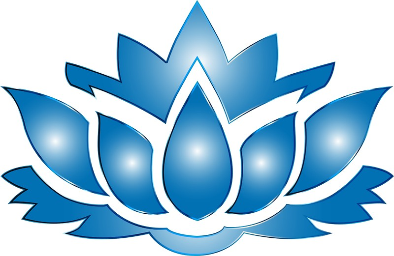 800x521 Ultramarine Lotus Flower Silhouette No Background. Stickers By