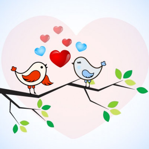 626x626 Love Bird Vector Free Download