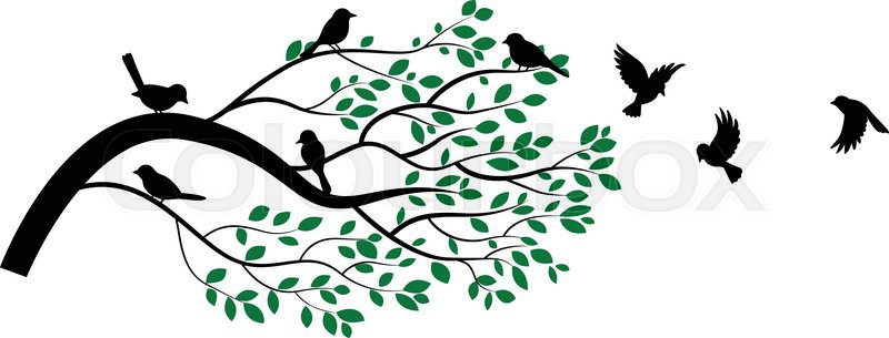 800x305 Bird On Branch Silhouette Clipart