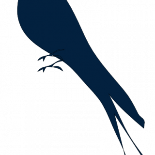 320x320 Tag For Love Bird Silhouette Silhouettes Love Birds Whisper 38in