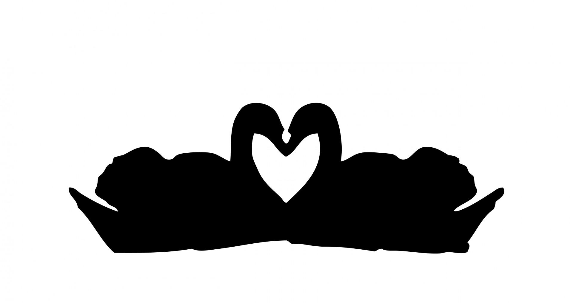 1920x1016 Swans Love Heart Clipart Free Stock Photo