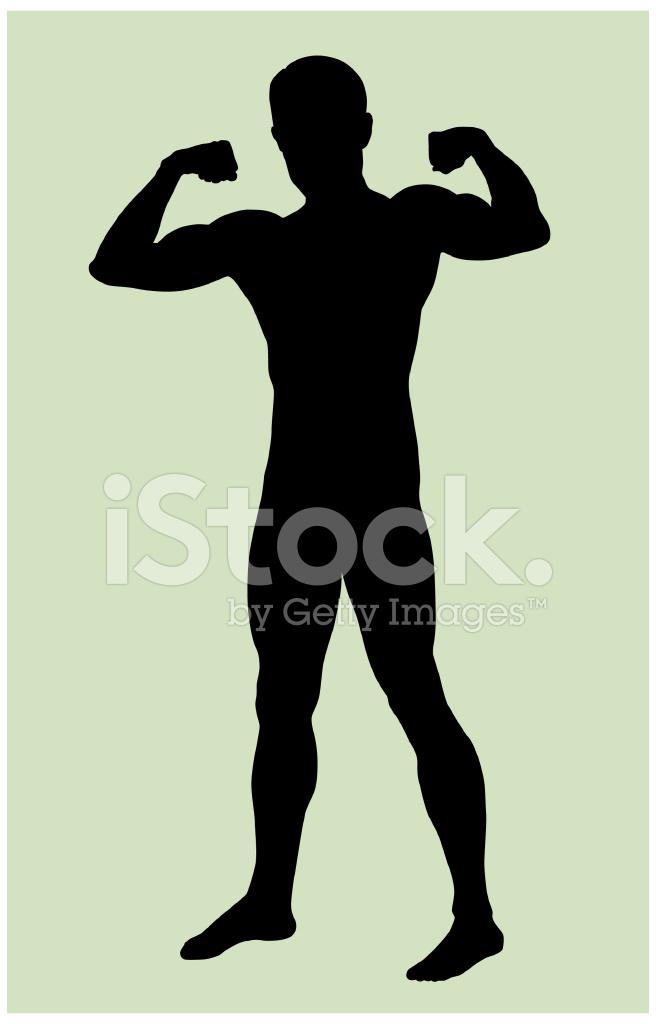 656x1024 Male Body Silhouette Stock Vector