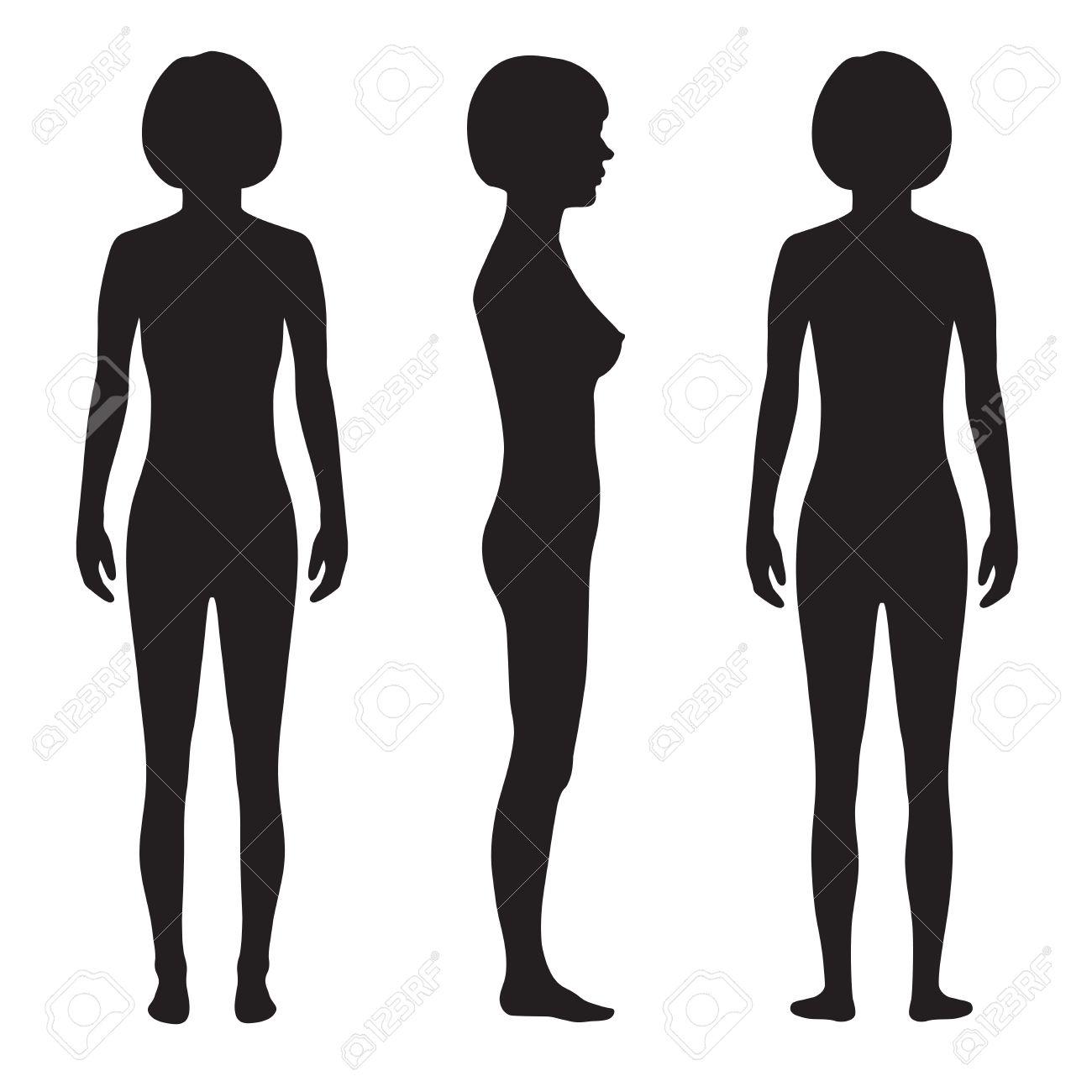 1300x1300 Female Body Anatomy Silhouette