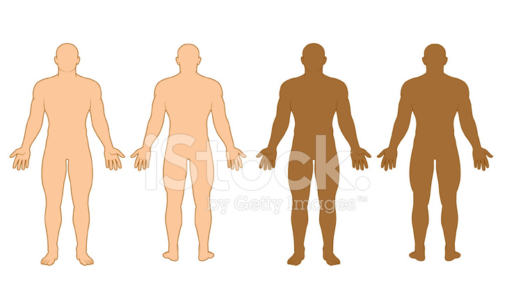 739x440 Male Body Outline Stock Vector