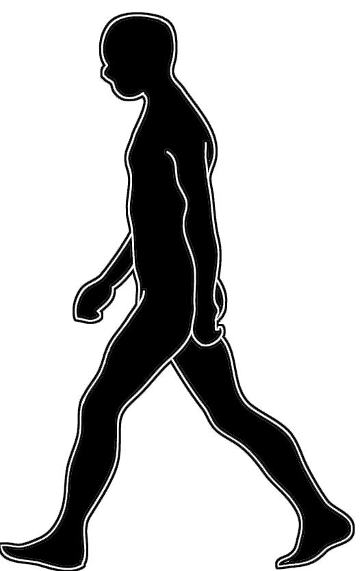 529x834 Body Silhouettes