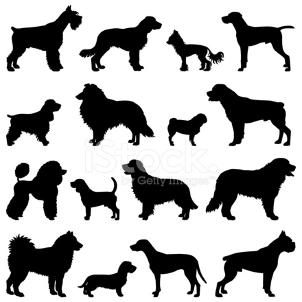 440x440 Purebred Dogs Silhouette Set Stock Vector