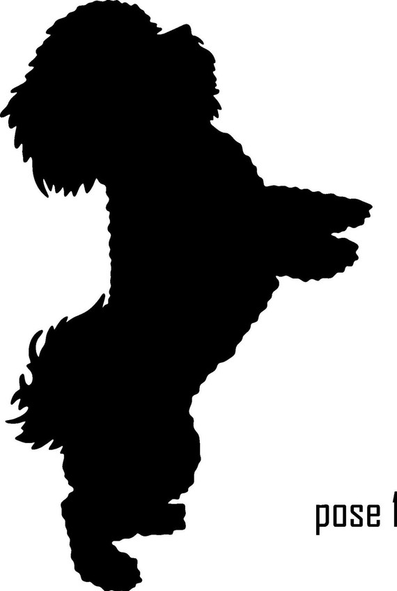 570x847 6 Bichon Frise Vinyl Dog Silhouette Decal 5.95 Cricut