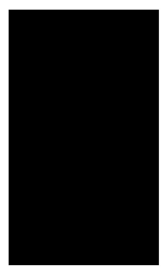 650x1061 Victorian Silhouette Clipart