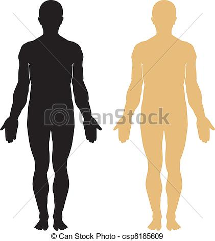 421x470 Human Body Silhouette. Vector Illustration Eps Vectors