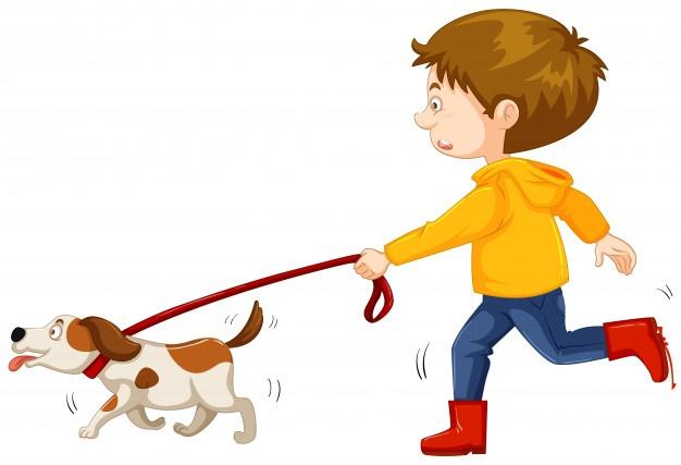 626x427 Dog Walk Vectors, Photos And Psd Files Free Download
