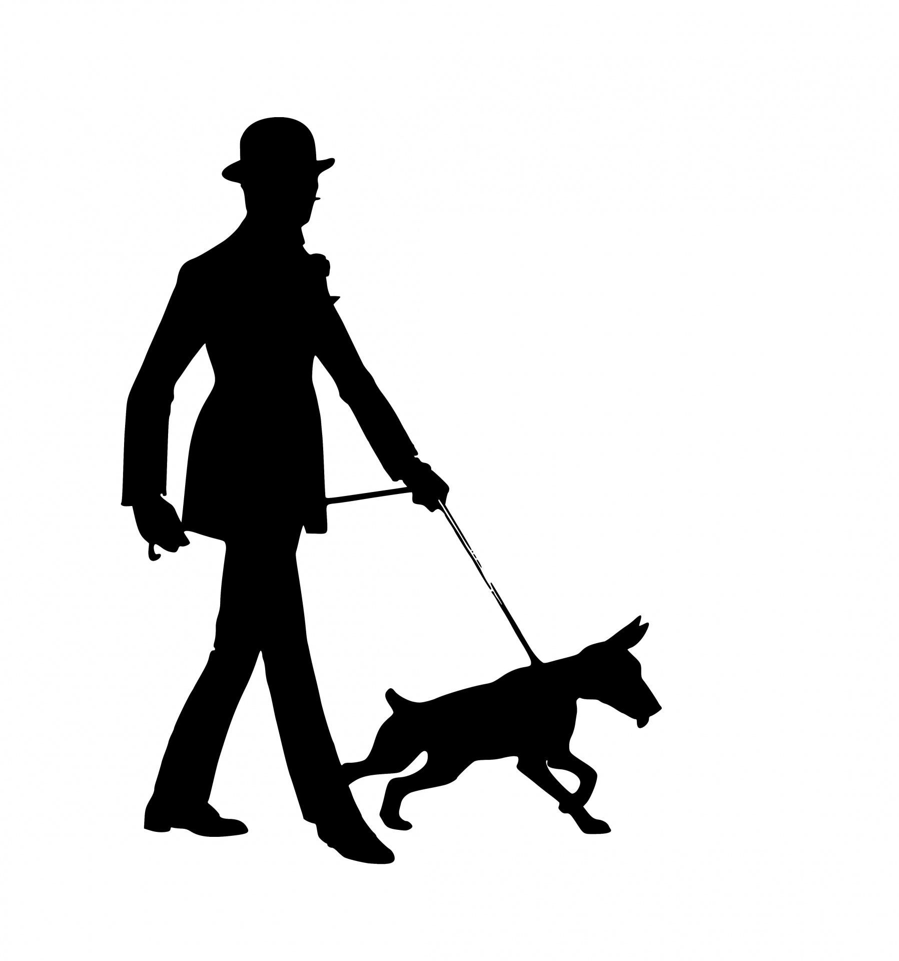 1797x1920 Man Walks Dog Silhouette Free Stock Photo