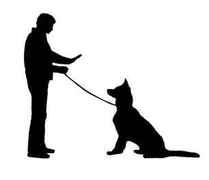 306x263 Person Walking Dog Silhouette