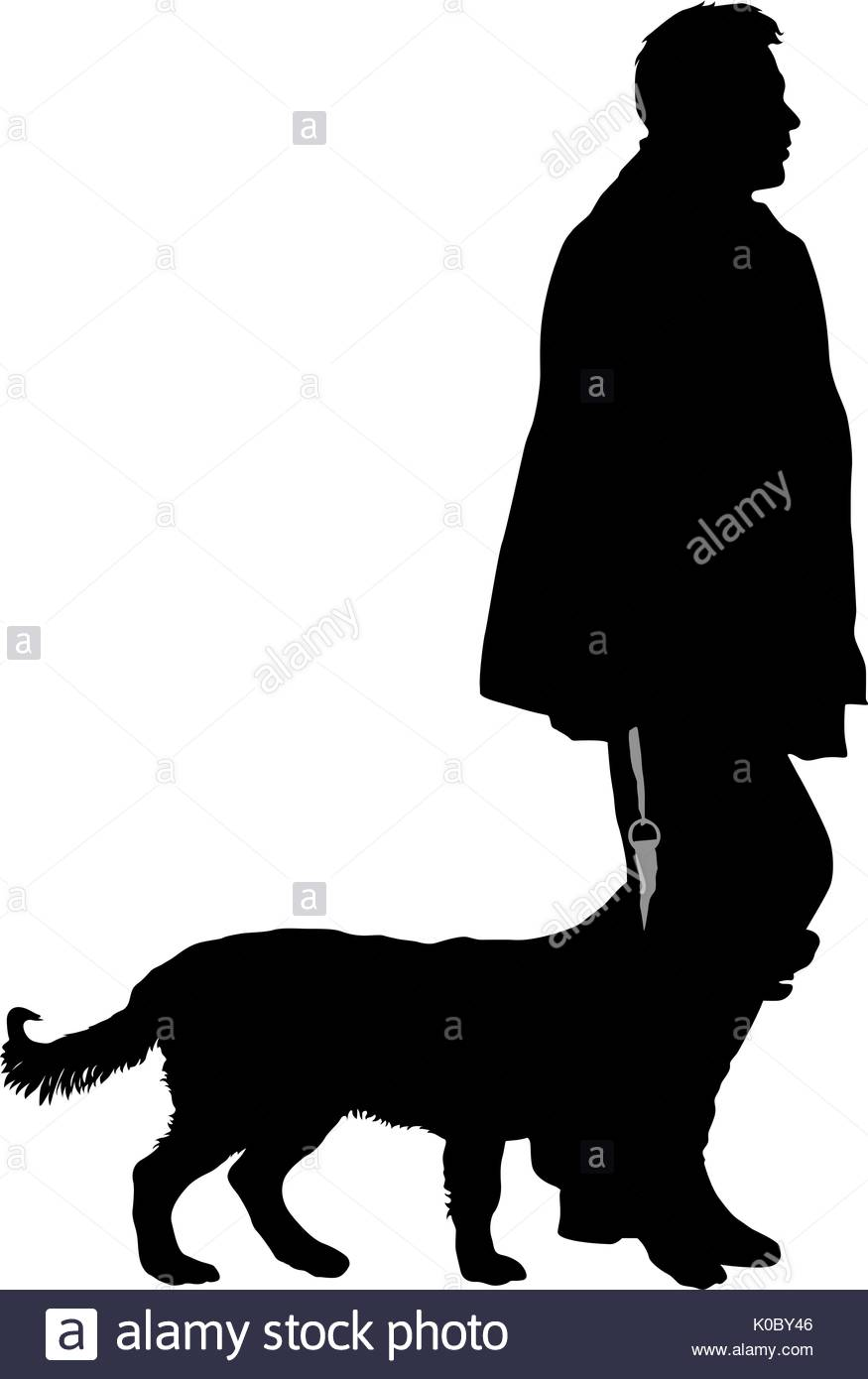 875x1390 Rottweiler Dog Black And White Stock Photos Amp Images