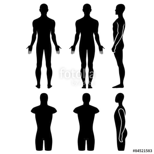 500x500 Male Mannequin Outlined Silhouette Torso Stock Image And Royalty