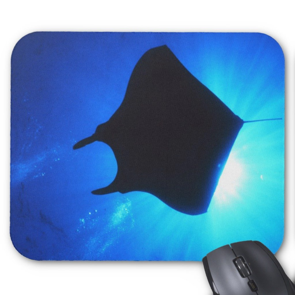 1024x1024 Zazzle Manta Ray Silhouette Mouse Pad Office Products