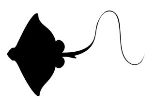 320x213 Manta Ray Silhouette Decal Sticker