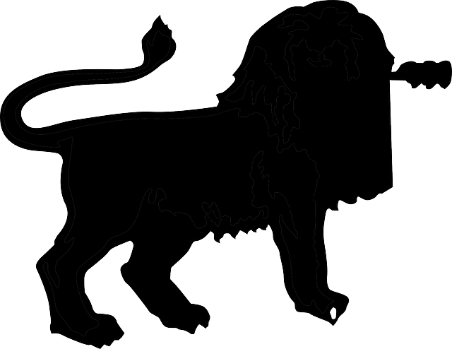 640x494 Blank Africa Map Outline. Africa Silhouette Background. 640 X 640
