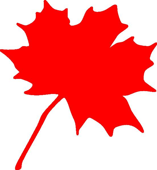 552x597 Maple Leaf Clip Art