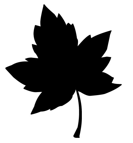 442x472 13 Graphic Leaf Silhouette Images