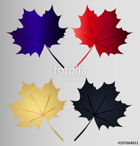 481x500 Set Maple Leaf