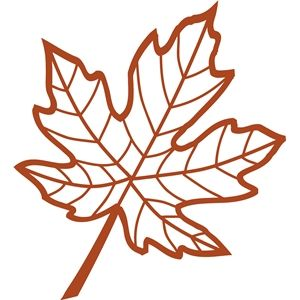 300x300 Veined Maple Leaf Silhouette Design, Silhouette And Leaves