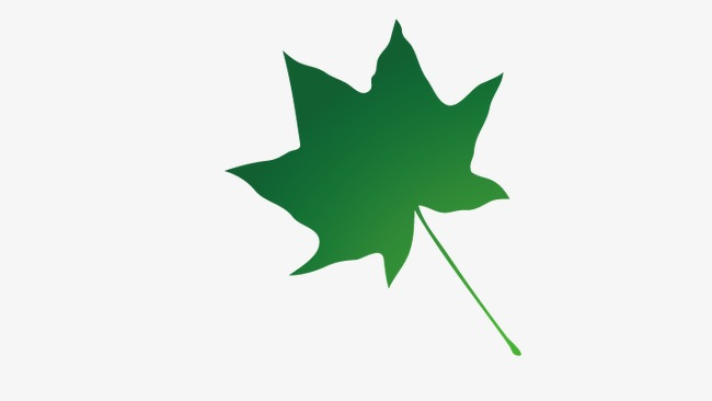 650x366 Maple Leaf Silhouette, Maple Leaf, Leaf Png And Vector For Free