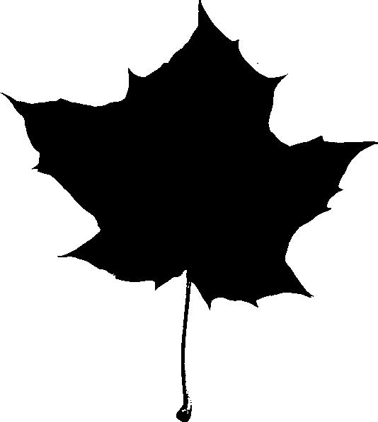 534x597 Maple Leaf Silhouette Clip Art