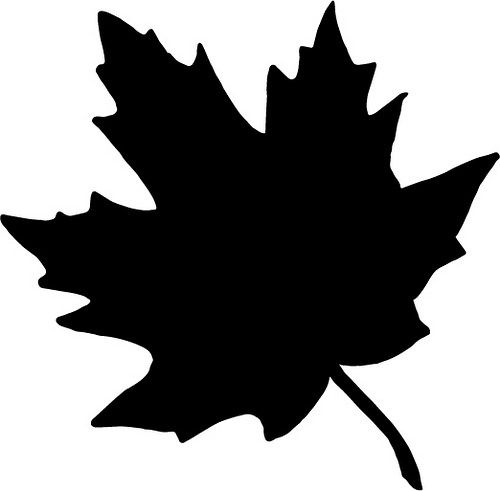 500x491 Maple Leaf Silhouette Projects Cricut, Happy Fall