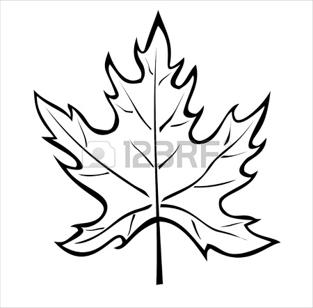450x442 Drawn Maple Leaf Silhouette