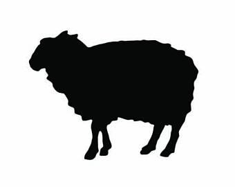 340x270 Lamb Decal Etsy