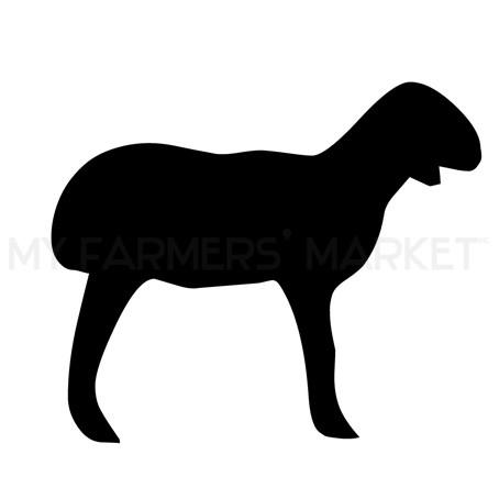 454x454 Pastured Lamb, Leg Steak