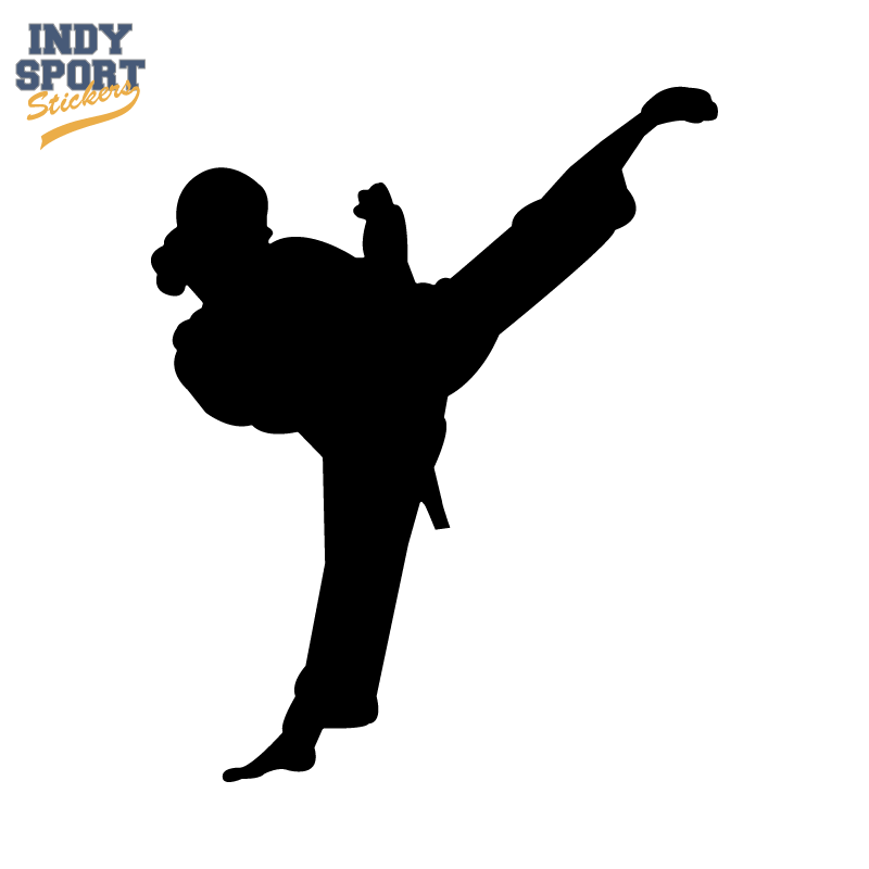 800x800 Martial Arts Karate Female Girl Kicking Silhouette